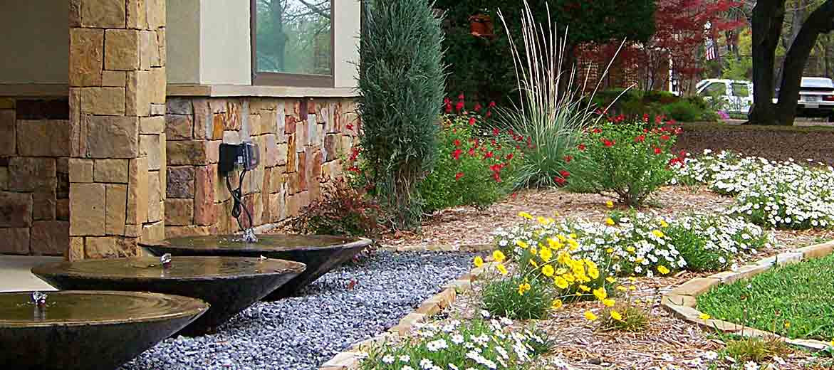 Low water and low maintenance gardening consultant in Dallas